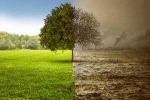 Rewitalizacja – przywracanie funkcjonalności terenom zdegradowanym