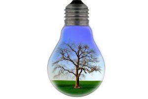 Lampy solarne do ogrodu – czy warto 5 powodów za